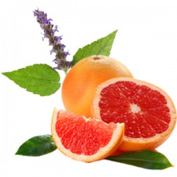Grapefruit & Patchouli (10ml)