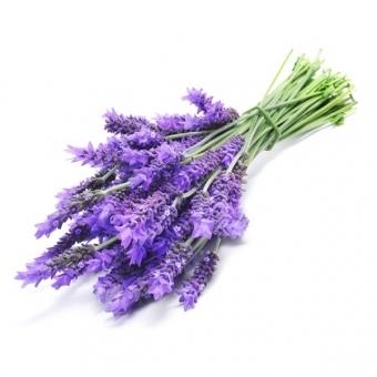 Lavendel Scrubzout (300ml)